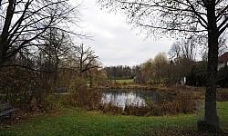 SuRo_Stadtpark