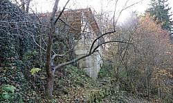 Burgruine Spitz
